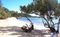 coochie_beach