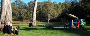 The campsite at Andrew Drynan Reserve, where our guests choosing the camping option stay on the 3-day wildlife overview tour