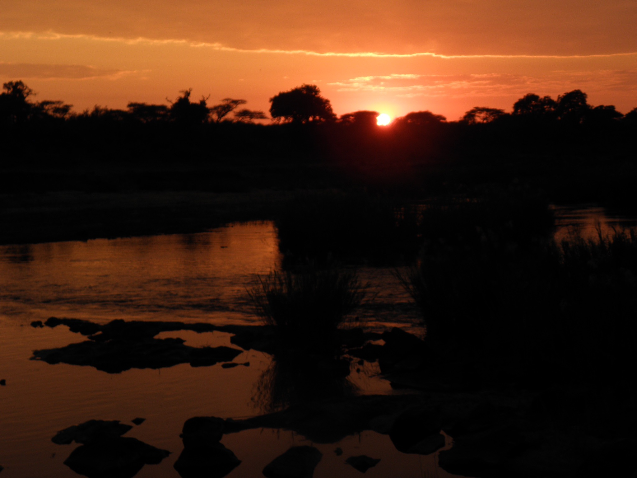 Sunrise on the Sabie River
