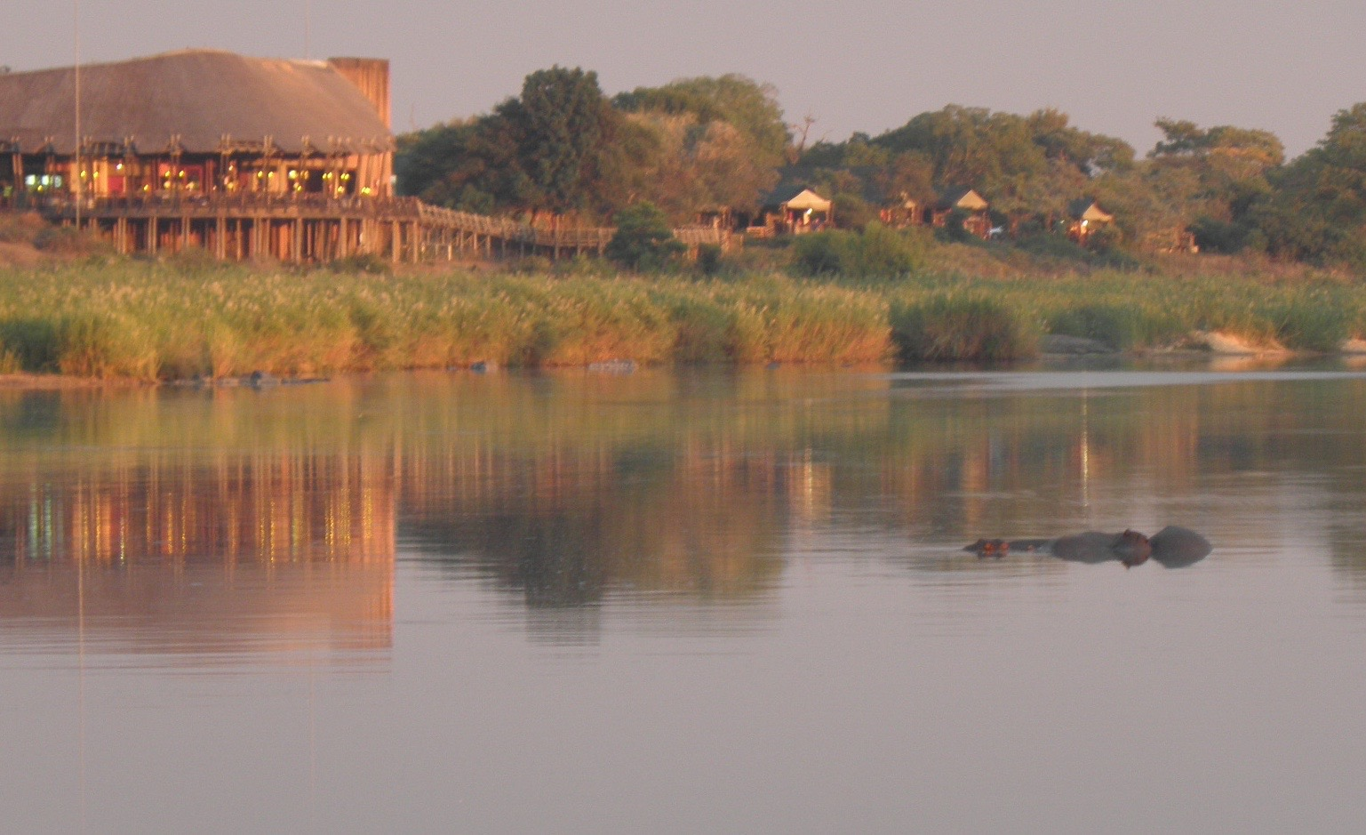 Lower Sabie is in an excellent position  for hippo watching!