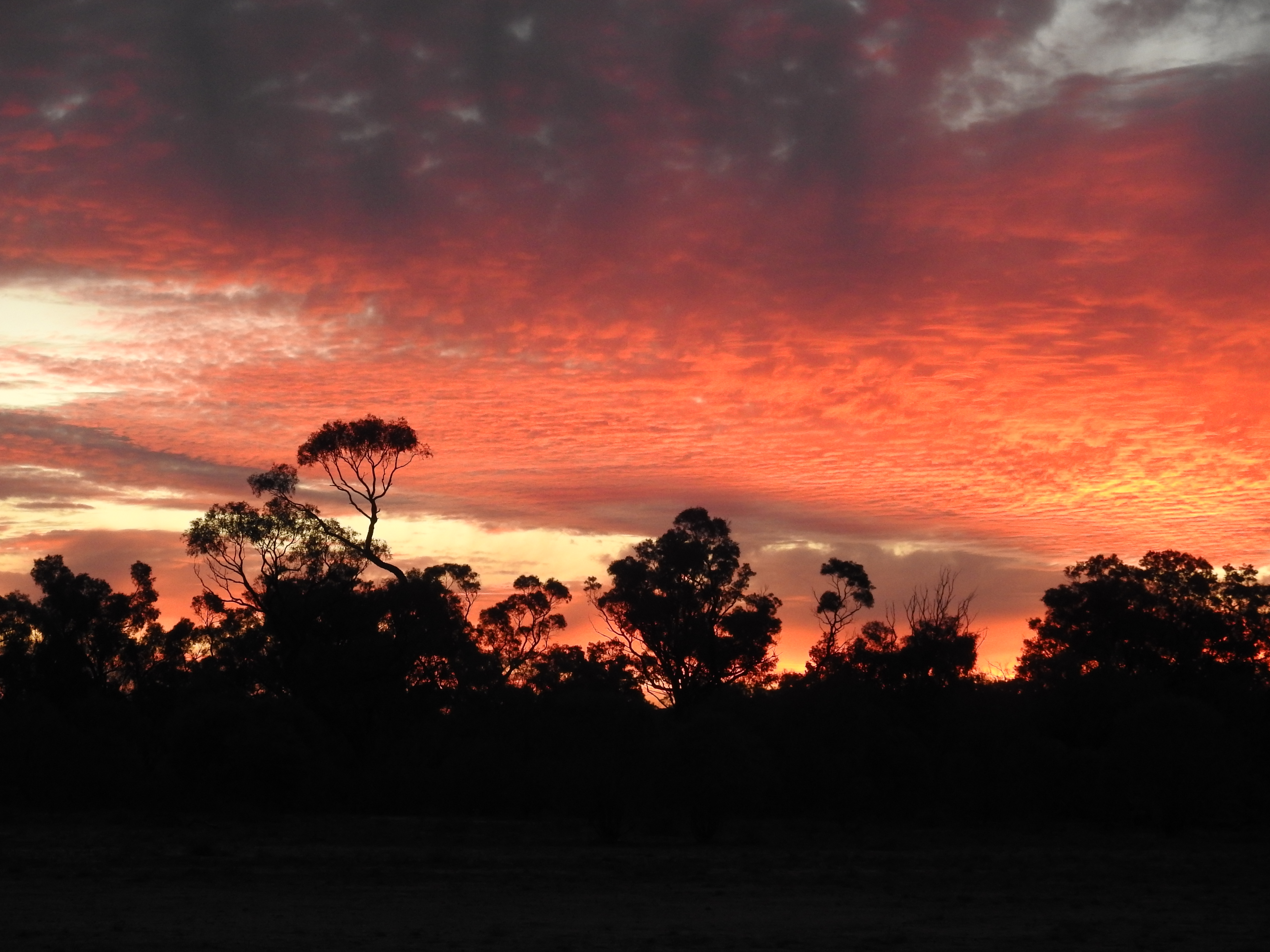 Sunset at Bowra
