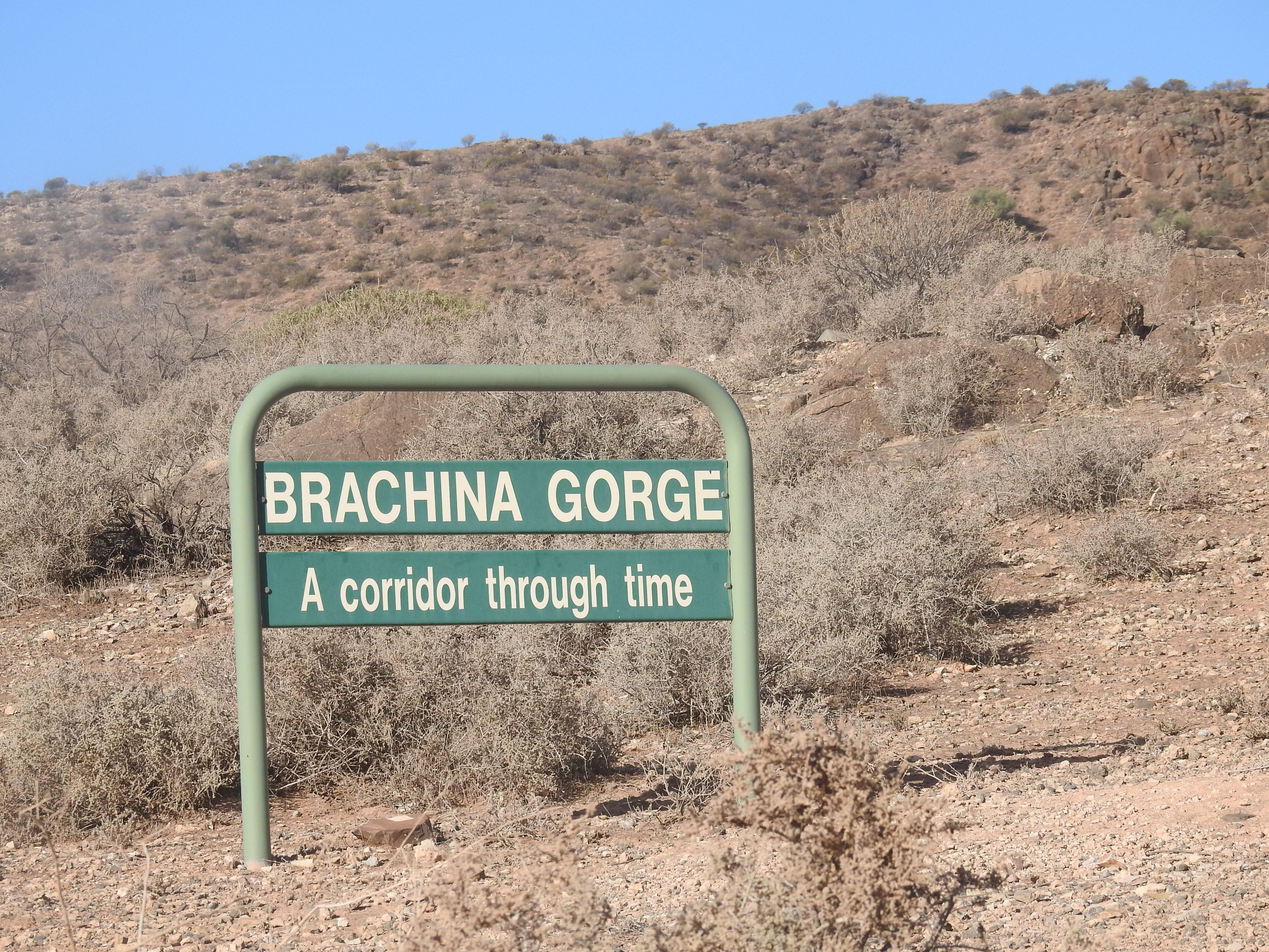 BrachinaTimeTrail
