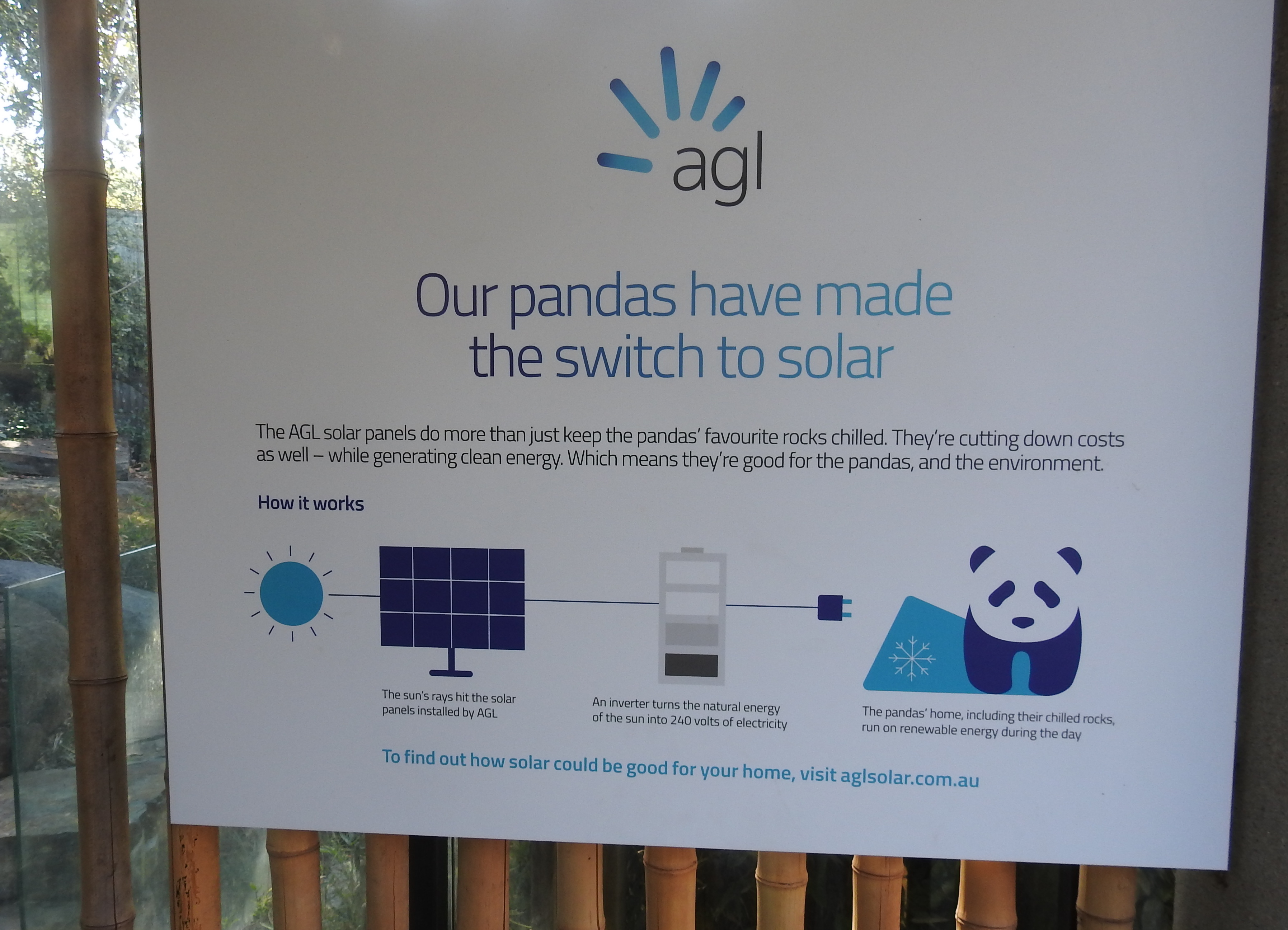 PandaSolarSign
