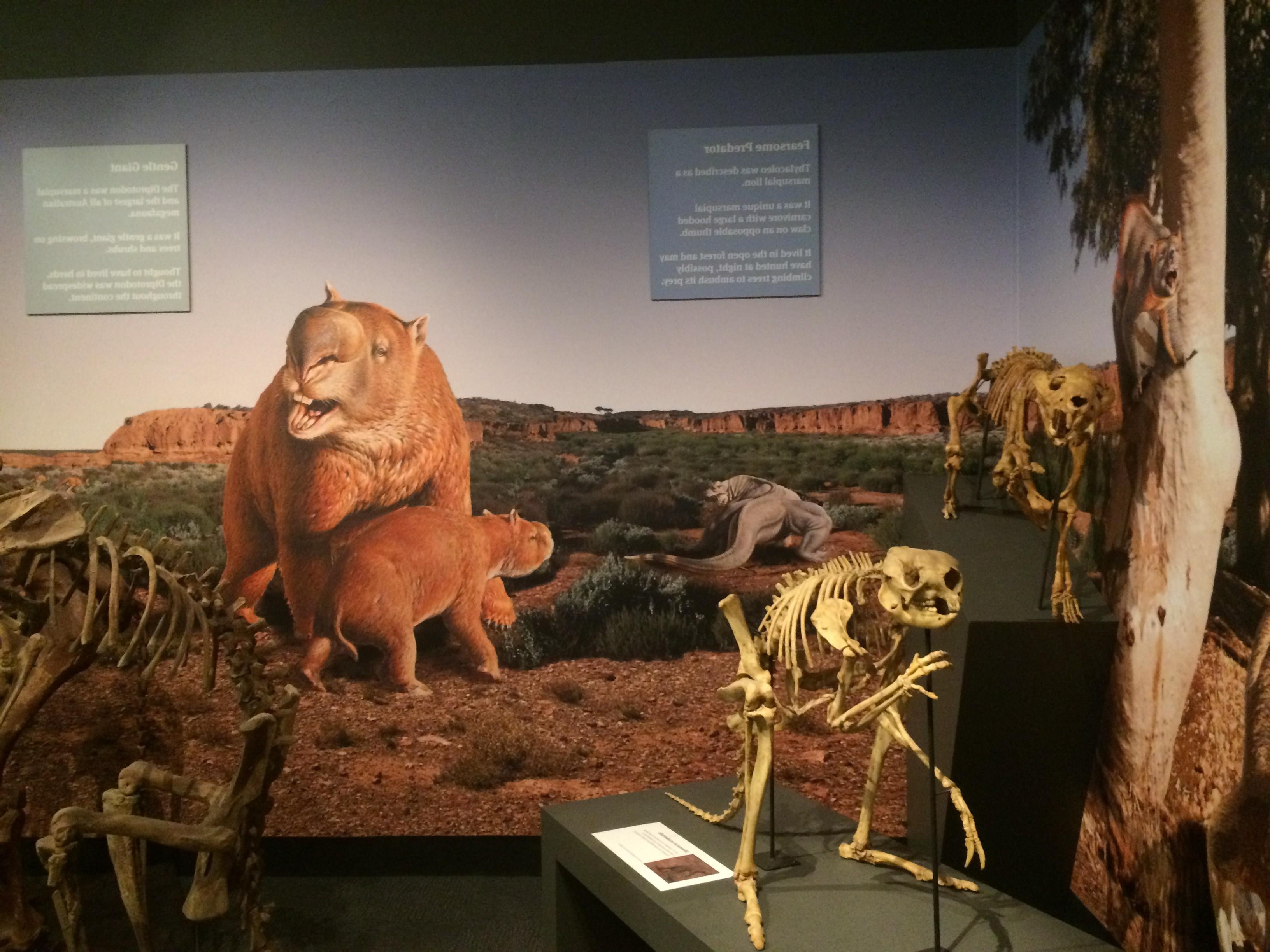 fossilmegafauna