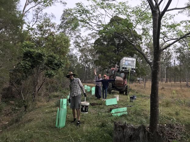 Habitat enhancement planting